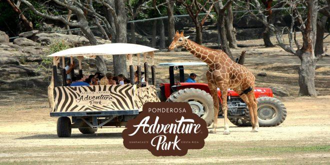 África Safari 1 día | 16 de junio 2018