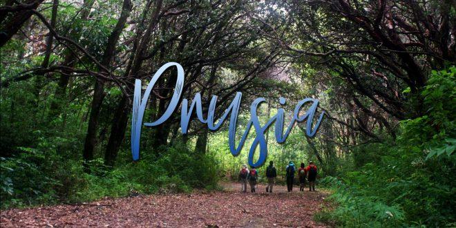 Bosque de Prusia | 9 de junio 2018