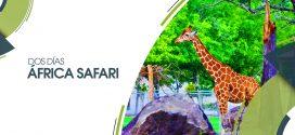 África Safari | 11 y 12 de mayo 2019