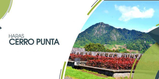 Haras Cerro Punta | 25 y 26 de mayo 2019